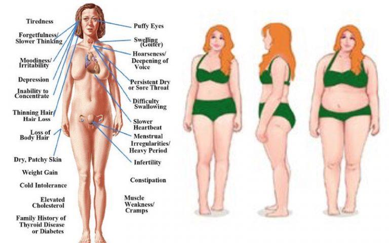 3-forgotten-essential-thyroid-diet-principles-768x480.jpg